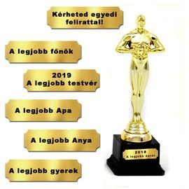 Egyedi Oscar-díj szobor - 28cm