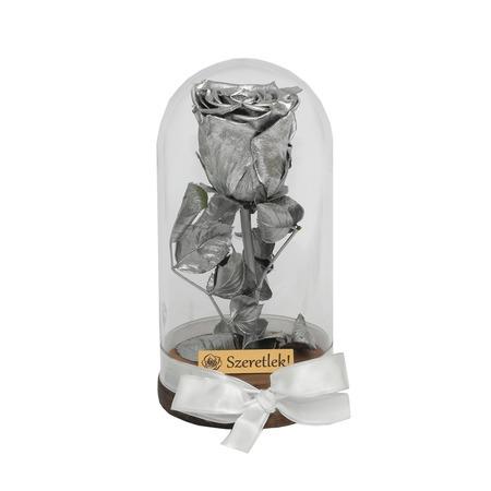 Örökózsa üvegbúrában - ezüst