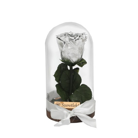 Örökózsa üvegbúrában - ezüst színű rózsafejjel