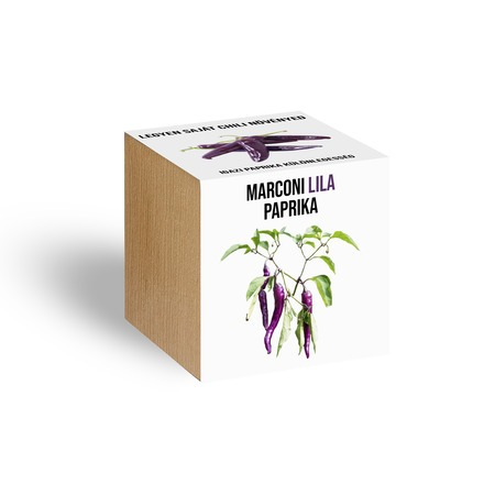 Lila marconi paprika növényem fa kaspóban