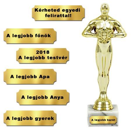 Egyedi Oscar-díj szobor - 24cm