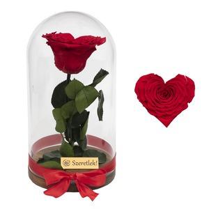 Szív alakú örökrózsa búrában - vörös