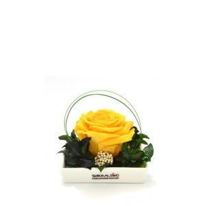 Smeraldino nagyméretű sárga örökrózsa kerámia tálban