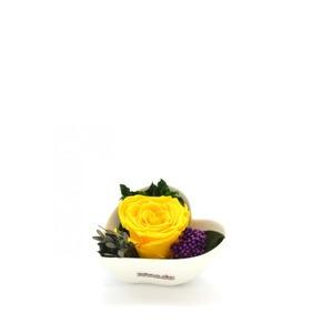 Smeraldino sárga örökrózsa szív kaspóban